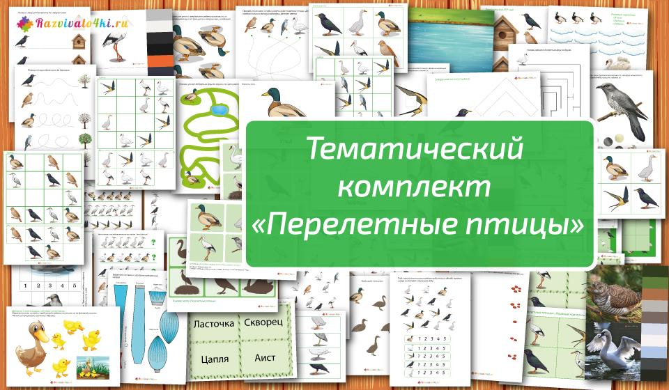 тематический комплект перелетные птицы