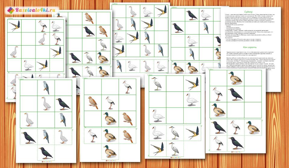 перелетные птицы судоку