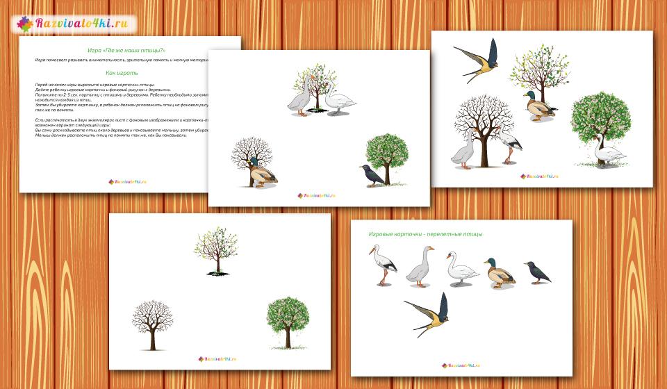 развитие фотопамяти перелетные птицы