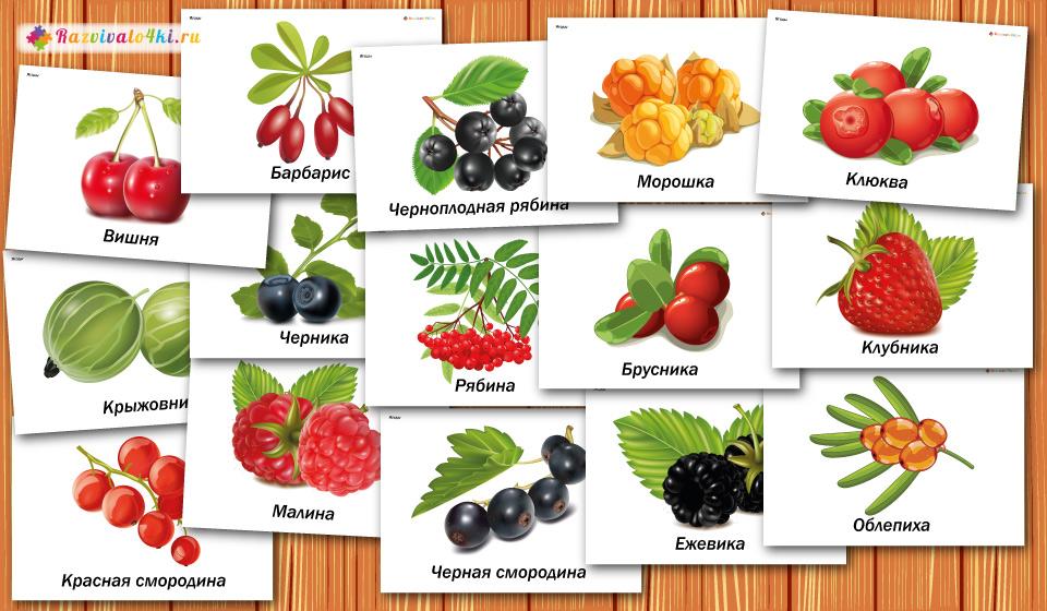 карточки ягоды, детям о ягодах
