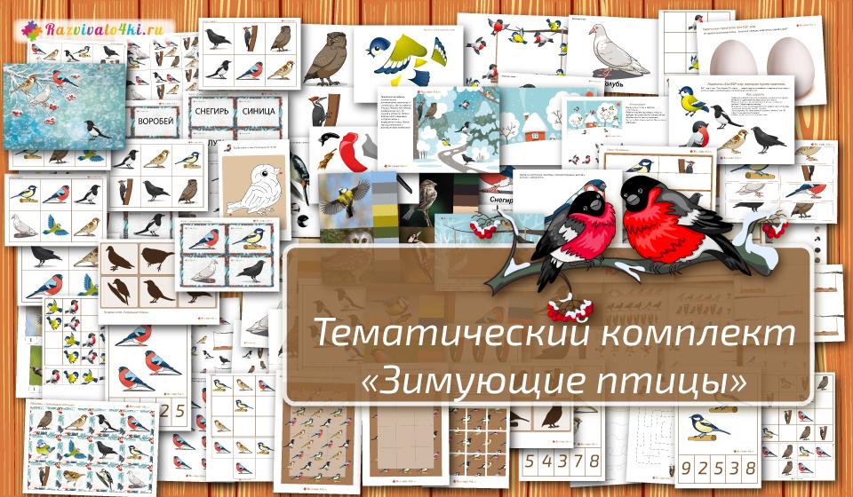комплект зимующие птицы, задания для детей