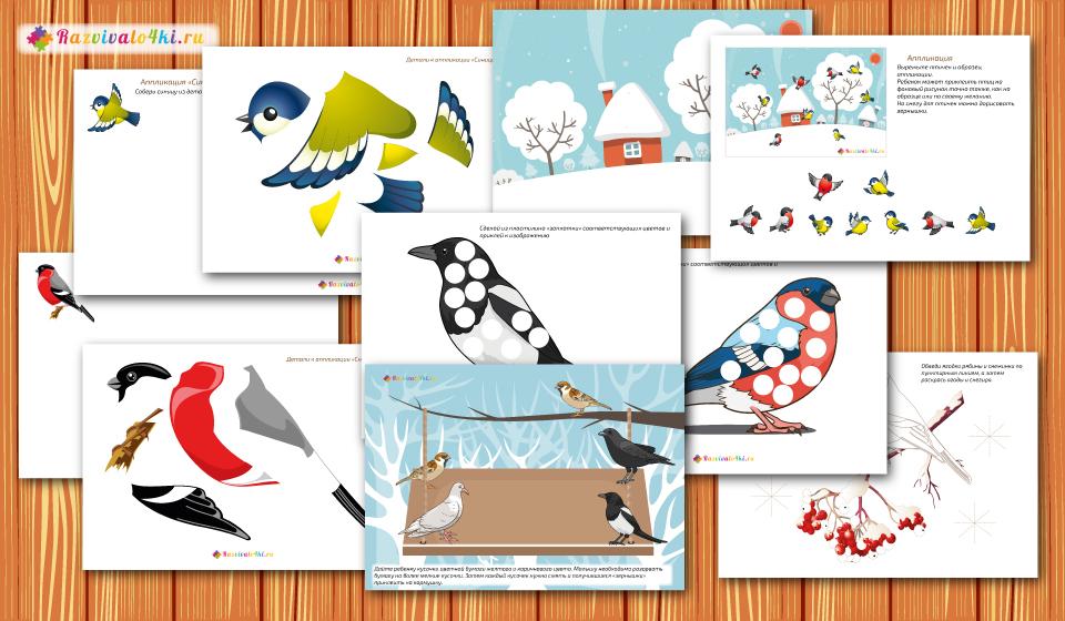 творческие задания, зимующие птицы