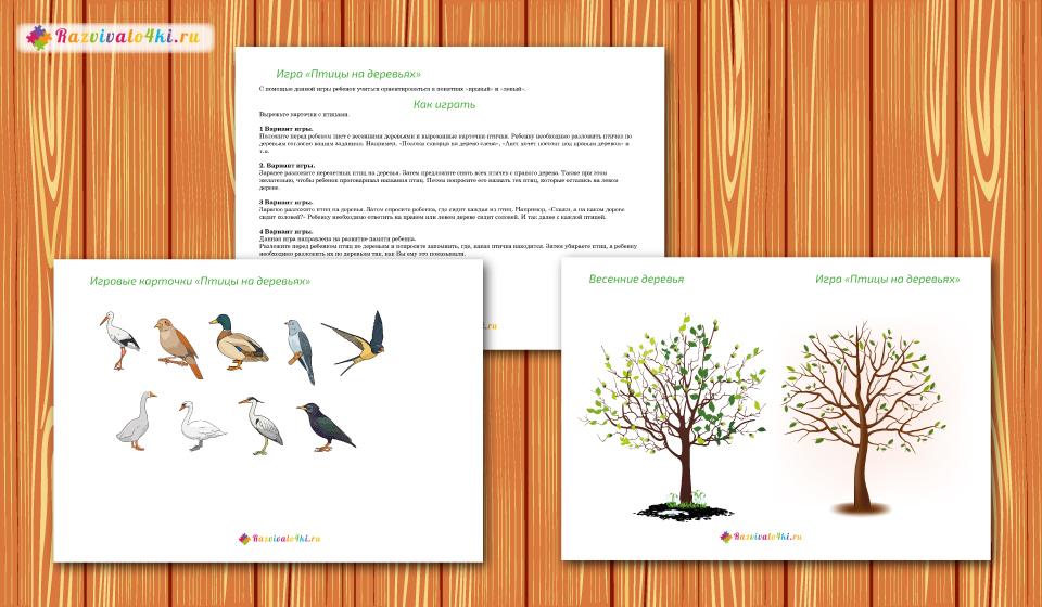 перелетные птицы пространственное мышление
