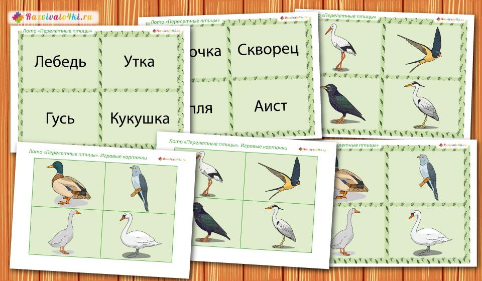 перелетные птицы лото