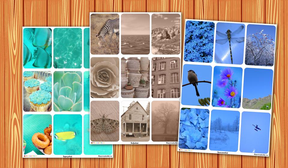 Оттенки цветов с картинками.