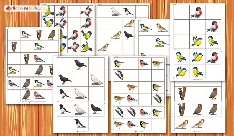 судоку для детей, зимующие птицы